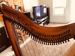 Montana Harps for Sale